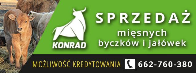 [Mobilna] 2. 1252x160 (PH Konrad)