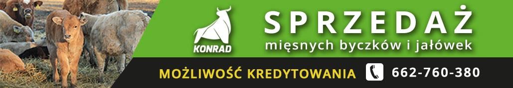 2. 1029x173 (PH Konrad)
