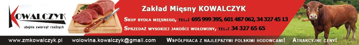 1. 1252x160 (Kowalczyk)
