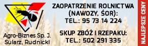 7. 290x90 (Agrobiznes)
