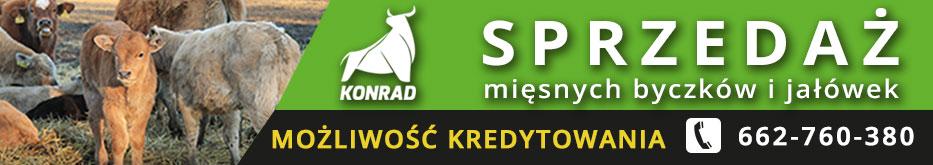 PH Konrad