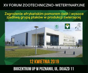 11. 336x280 (Forum wet)