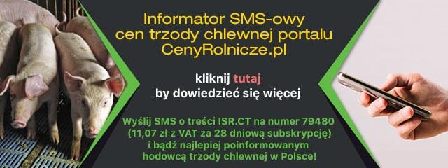 [Mobilna] 1. 1252x160 (sms)