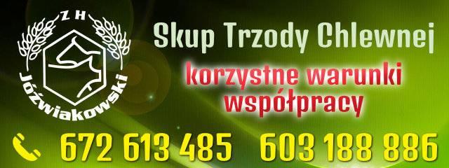 [Mobilna] 5. 640x240 (B1) Jóźwiakowski
