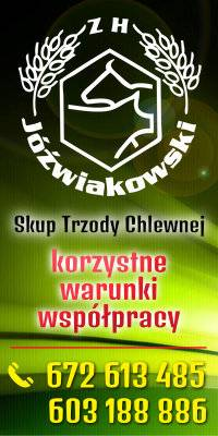 [Lewa] 1. 200x200  (B1) Jóźwiakowski