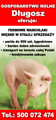 GR Długosz