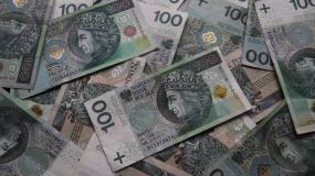 dopłaty bezpośrednie, dopłaty obszarowe, wnioski o dopłaty bezpośrednie