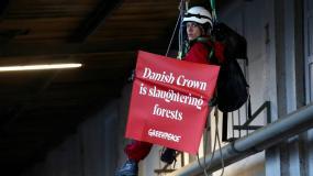 Greenpeace Polska, Danish Crown, Sokołów