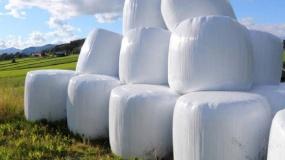 folia rolnicza, odpady w gospodarstwie, usuwanie folii rolniczej, agrowłóknina