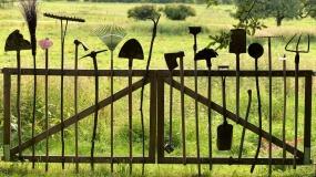 ogrodzenie, ASF, afrykański pomór świń