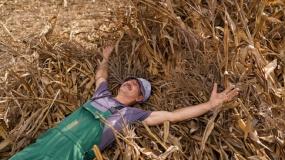 rolnik aktywny zawodowo, papierowi rolnicy, rolnik z mariotta