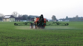 środki ochrony roślin, ceny śor, oprysk, glifosat