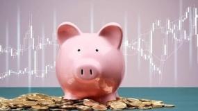 ceny świń, ceny tuczników, świnie, tuczniki, żywiec wieprzowy
