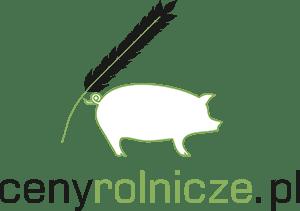 Aktualna Cena Kukurydzy I Rzepaku Skup Rzepak I Kukurydza